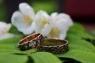 Обручальное Кольцо 7 камней